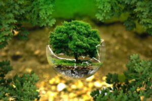 Finanzielle und ökologische Vorteile dank der Nutzung von Regenwasser